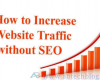Top Killer Ways to Double Your Blog/Site Traffic Without SEO